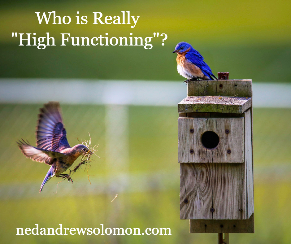 Who is Really High Functioning