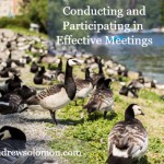 lots of ducks gathering by the water with Conducting and Participating in Effective Meetings overlay and nedandrewsolomon.com watermark at the bottom